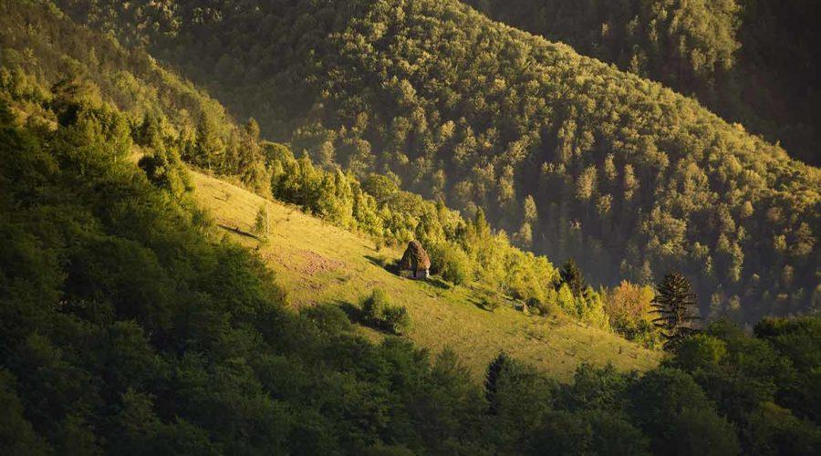 Mountain Landsacape Romania